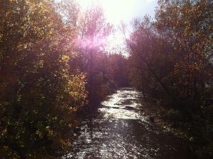 A glimpse of fall colors near our home (taken September 2012)