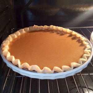 Bake for about an hour, until the pumpkin is set. Remove from the oven and cool.